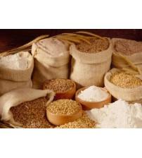 Wheat Flour / Dalia / Wheat Porridge