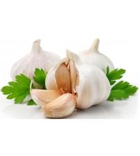 Garlic / Lahsun